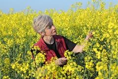 Agricoltore o agronomo nel giacimento sbocciante del seme di ravizzone Immagine Stock