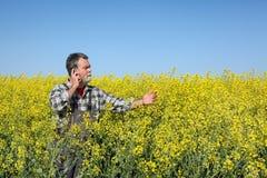 Agricoltore o agronomo nel giacimento sbocciante del seme di ravizzone Immagini Stock Libere da Diritti