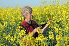 Agricoltore o agronomo nel giacimento sbocciante del seme di ravizzone Immagine Stock Libera da Diritti