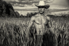 Agricoltore o cowboy sexy accanto al giacimento del fieno Fotografie Stock Libere da Diritti