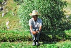 Agricoltore peruviano a Arequipa Fotografie Stock