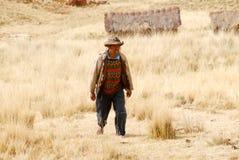 Agricoltore peruviano, Perù Immagini Stock