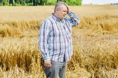 Agricoltore preoccupato sul giacimento di cereale distrutto Fotografia Stock