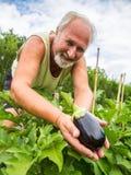 Agricoltore reale nel suo proprio giardino domestico Immagine Stock Libera da Diritti