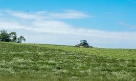 Agricoltore scozzese nell'erba di taglio del trattore Fotografia Stock Libera da Diritti