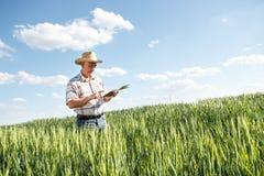 Agricoltore senior Immagine Stock Libera da Diritti