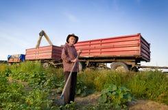 Agricoltore senior al raccolto di cereale Fotografie Stock Libere da Diritti
