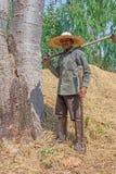 Agricoltore senior asiatico Fotografia Stock