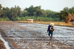 Agricoltore senior che fa in un campo Fotografia Stock Libera da Diritti