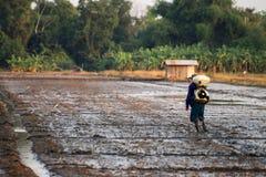 Agricoltore senior che fa in un campo Fotografia Stock