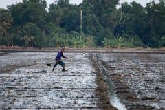 Agricoltore senior che fa in un campo Immagine Stock Libera da Diritti