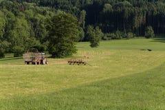 agricoltore senior che rivolta il fieno con un vecchio traktor Fotografia Stock
