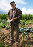 Agricoltore senior che sta con i soldi Fotografia Stock
