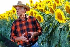 Agricoltore senior che sta in un campo Immagini Stock