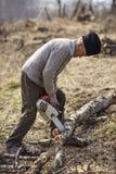 Agricoltore senior che taglia un albero a pezzi Fotografie Stock Libere da Diritti