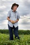 Agricoltore senior che tiene i fagioli gialli Fotografie Stock Libere da Diritti
