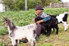 Agricoltore senior con una capra di tre bambini Immagine Stock Libera da Diritti