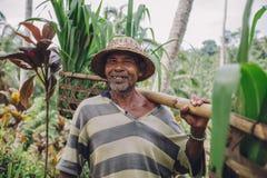 Agricoltore senior felice che porta un giogo sulle sue spalle Fotografia Stock Libera da Diritti