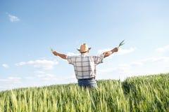 Agricoltore senior in un campo Immagine Stock