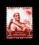 Agricoltore, serie di agricoltura, Egitto circa 1954 Fotografia Stock Libera da Diritti
