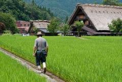 Agricoltore in Shirakawago Immagine Stock