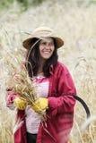 Agricoltore soddisfatto che esamina il raccolto con un mazzo di grano maturo Fotografia Stock