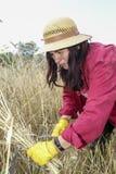 Agricoltore soddisfatto che esamina il raccolto con un mazzo di grano maturo Immagine Stock