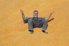 Agricoltore sorridente allegro al mucchio del raccolto del cereale dopo il raccolto ed il lancio  fotografie stock
