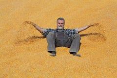 Agricoltore sorridente allegro al mucchio del raccolto del cereale dopo il raccolto ed il lancio  immagini stock libere da diritti