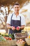Agricoltore sorridente che tiene due mele rosse Fotografia Stock