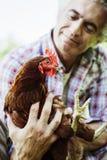 Agricoltore sorridente che tiene un pollo Immagine Stock