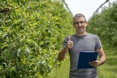 Agricoltore sorridente With Clipboard in un frutteto che d? pollice su fotografia stock libera da diritti