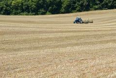 Agricoltore Sows Seed For in secondo luogo Hay Crop Fotografie Stock Libere da Diritti