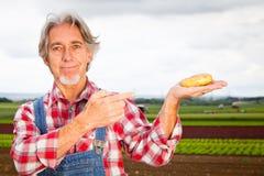 Agricoltore Standing In Front Of His Field Fotografie Stock Libere da Diritti