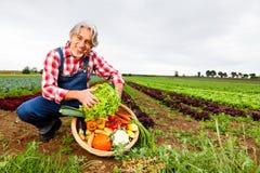 Agricoltore Standing In Front Of His Field Immagini Stock Libere da Diritti