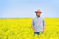 Agricoltore Standing nel giacimento agricolo coltivato seme di ravizzone del seme oleifero Fotografia Stock