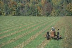 Agricoltore su un trattore in autunno in Stowe, VT Immagine Stock