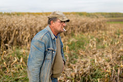 Agricoltore sul campo, cereale Immagine Stock Libera da Diritti