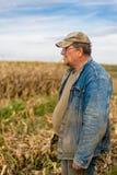Agricoltore sul campo, cereale Fotografia Stock Libera da Diritti