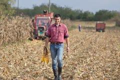 Agricoltore sul campo di grano Immagini Stock Libere da Diritti
