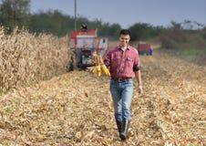 Agricoltore sul campo di grano Immagine Stock