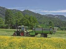 Agricoltore sul lavoro di estate Fotografia Stock Libera da Diritti