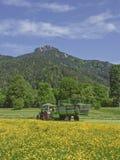 Agricoltore sul lavoro di estate Fotografie Stock Libere da Diritti