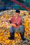 Agricoltore sul mucchio del cereale Fotografia Stock Libera da Diritti