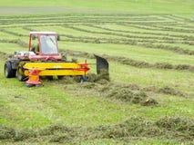 Agricoltore sul suo trattore che muove l'erba per renderlo asciutta a Engelberg sulle alpi svizzere Fotografia Stock