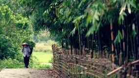 Agricoltore sulla strada non asfaltata, valle di PA del Sa, Vietnam Fotografie Stock Libere da Diritti
