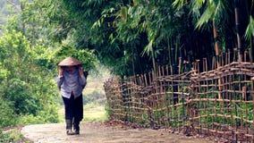Agricoltore sulla strada, valle di PA del Sa, Vietnam Immagini Stock Libere da Diritti