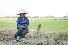 Agricoltore tailandese asiatico che utilizza smartphone e computer portatile nel ri Immagine Stock Libera da Diritti