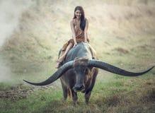 Agricoltore (tailandese) asiatico della donna con un bufalo Fotografia Stock Libera da Diritti