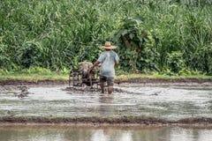 Agricoltore tailandese che guida il trattore dell'attrezzo alla risaia dell'aratro prima della cultura del riso, Chiang Mai, Tail Immagine Stock Libera da Diritti